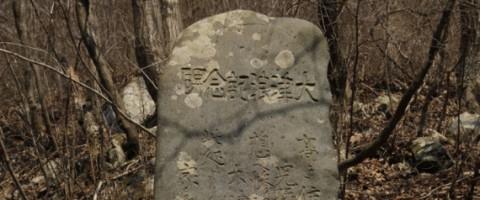 r-JAPAN-TSUNAMI-ANCESTORS-large570